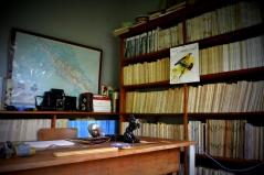 Alexander Skutch office